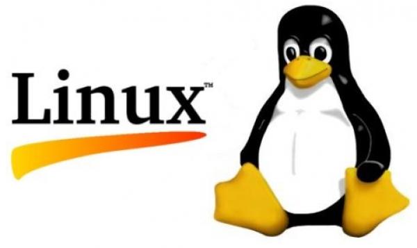 linux-tux_0