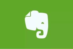 Evernote_elefante